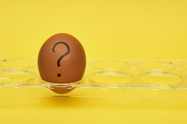 Chicken eggs in an egg stand. tray for eggs. emotions and facial expressions on eggs, a question mark on an egg. black egg.
