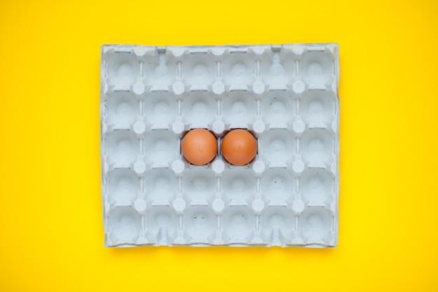 カセットに入った鶏卵