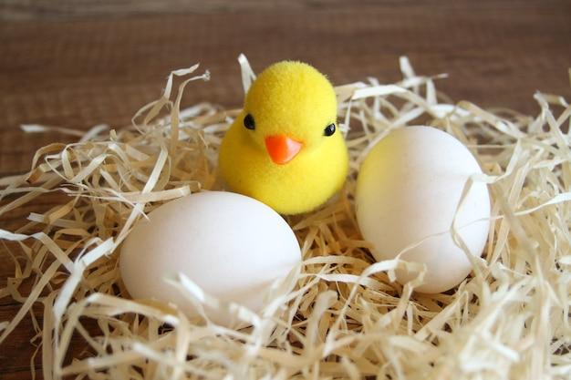 둥지에있는 닭 계란 새 둥지는 계란의 클러치와 함께. 흰 계란과 둥지에 닭 작은 병아리