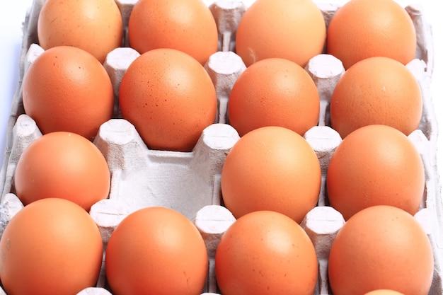 닭고기 달걀 흰색 배경에 고립입니다. 건강식