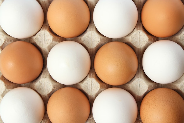 Куриные яйца на цветном фоне продукты фермы натуральные яйца