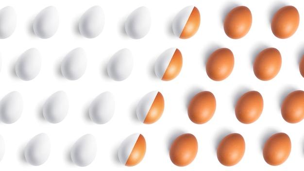 白い背景の上の鶏卵パターン