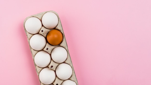 Chicken eggs in rack on pink table