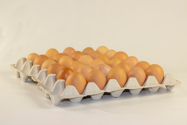 Chicken eggs in tray isolated on white