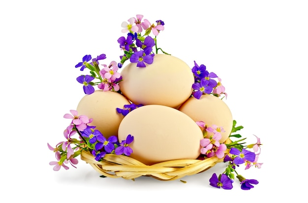 Chicken eggs in a wicker tray with pink and purple flowers isolated