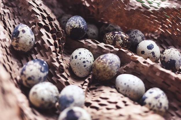 Chicken and quail eggs in a nest on brown table, family concept
