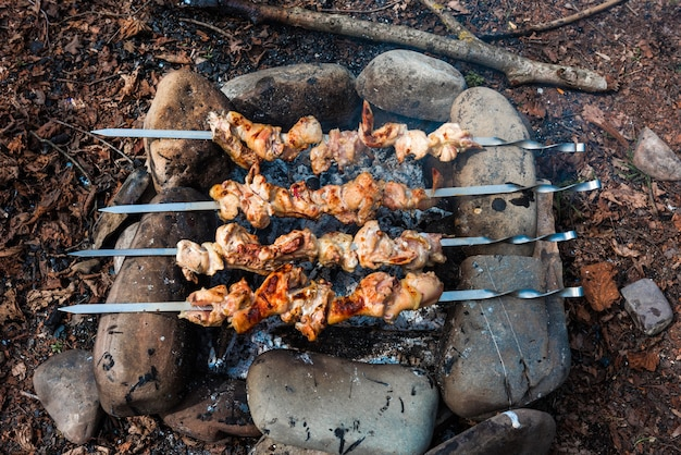 Chicken shish kebab at the stake