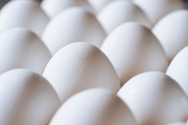 Куриные белые яйца крупным планом. сельскохозяйственные продукты и натуральные яйца. здоровая пища.