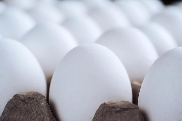 Куриные белые яйца крупным планом. сельскохозяйственные продукты и натуральные яйца в картонном лотке. здоровая пища.