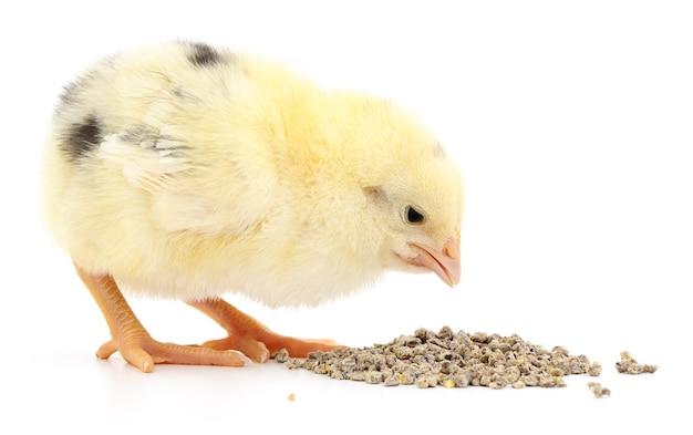 分離された食品と鶏肉