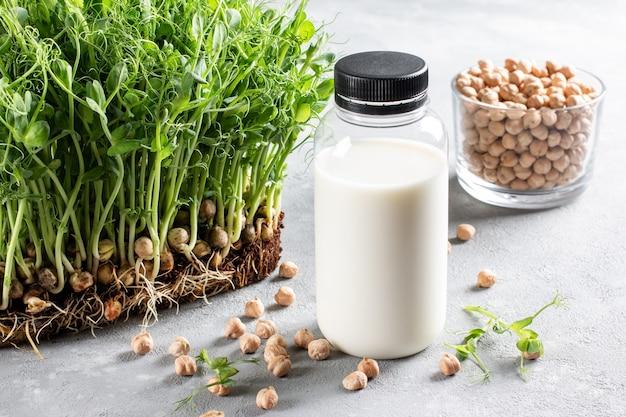 Chickpea vegetarian milk in bottle, raw chickpeas in glass on light gray background