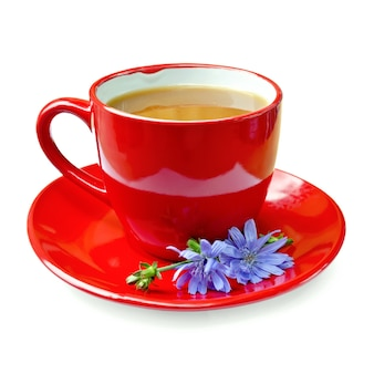 Chicory drink in a red cup with flower chicory on a saucer isolated on white background