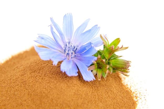 Куча порошка корня цикория органических пищевых добавок с синими цветами, изолированными на белой стене