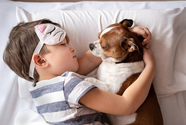Chihuahua dog and preschool boy sleeping in kitty sleep mask and lying in bed. embracing dog.