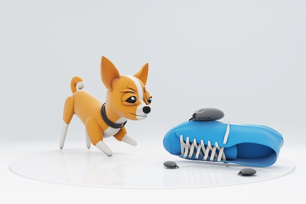 Собака чихууа играет с кроссовками