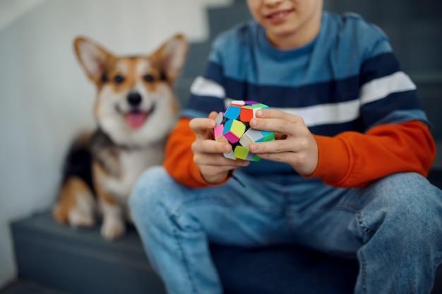 아이와 그의 개는 계단에서 퍼즐 큐브를 가지고 놀고 있습니다. 두뇌 및 논리적 마인드 훈련, 창의적인 게임, 복잡한 문제 해결을 위한 장난감