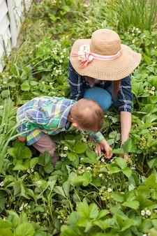 뒤뜰에 있는 딸기 식물 정원에서 가꾸는 아이와 어머니