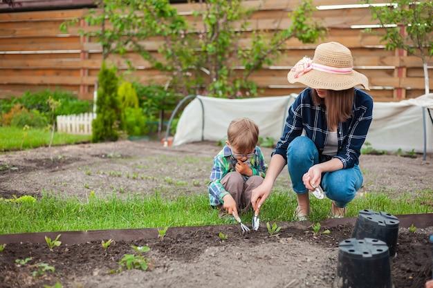 뒤뜰에 있는 채소밭에서 가꾸는 아이와 어머니