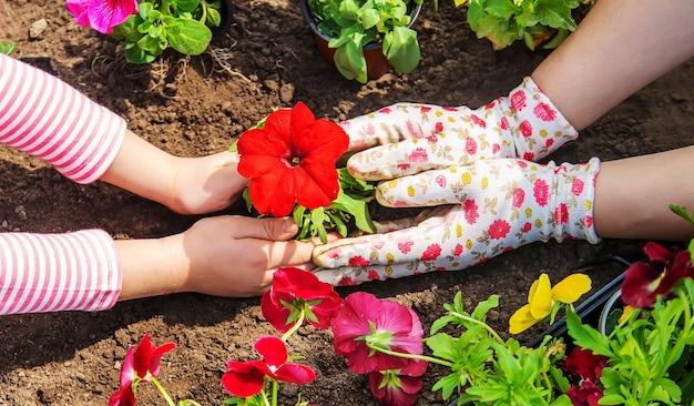 Ребенок и мать сажают цветы в саду