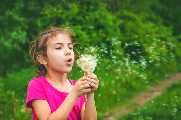 Child blowing dandelions in nature. selective focus. nature.