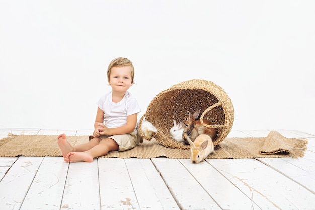 Child boy beautiful cute cheerful and happy with little animals rabbits on white wall
