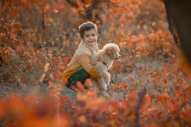 彼の腕の中で犬のプードルと明るいカラフルな秋の木々の近くの子少年