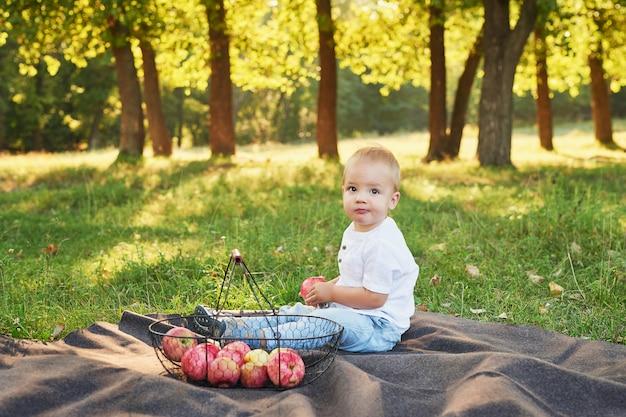 ピクニックに公園でりんごの子少年