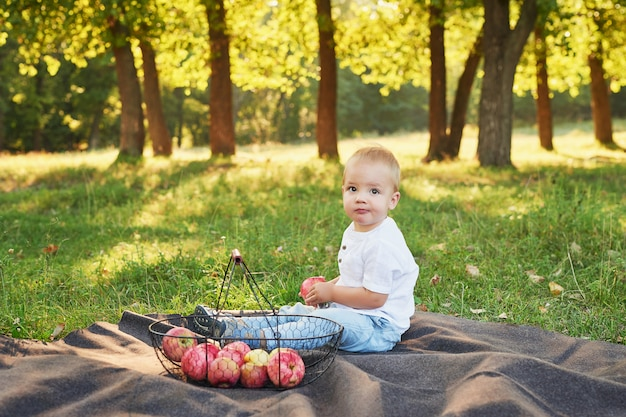Child boy with apples in the park on a picnic