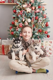Child boy with dogs husky puppies and christmas tree.