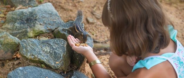 A child feeds palm squirrels