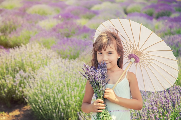 A child in a flowering field of lavender.