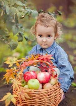 Child girl and basket with apples in a autumn garden