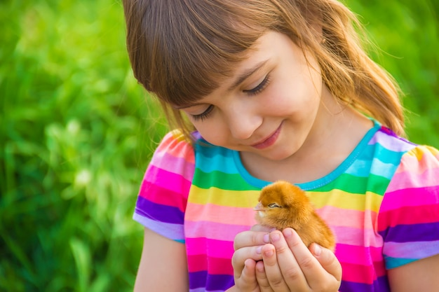Child girl with chicken in hand