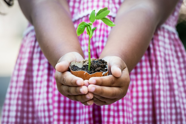 Child  hand holding young tree in egg shell for prepare plant on ground,save world concept