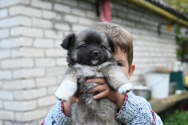 Ребенок держит пухлого щенка
