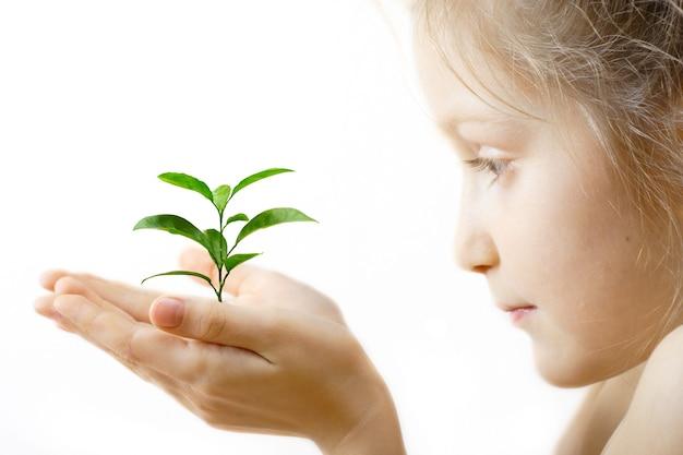 Ребенок держит росток в руках на белом фоне