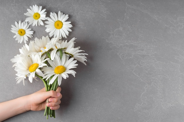 Child holding bouquet of chamomile flowers on grey background space for text top view