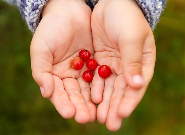 그녀의 손에 신선한 딸기를 들고 아이