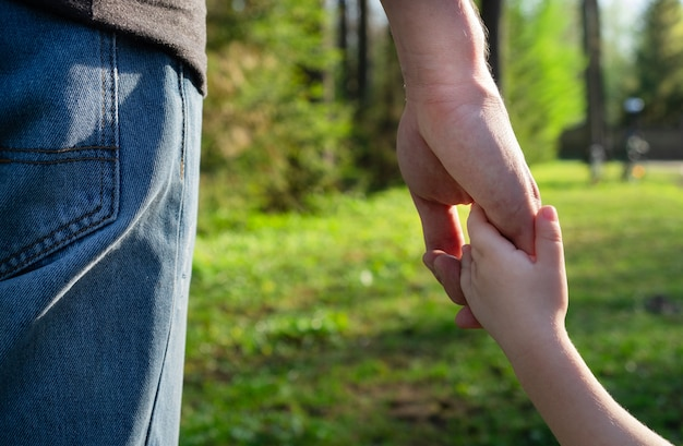 Child holding hand father. family concept, fathers day