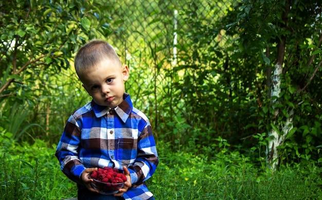 아이는 농장에서 익은 나무 딸기 유기농 제품이 든 그릇을 들고 있습니다. 선택적 초점