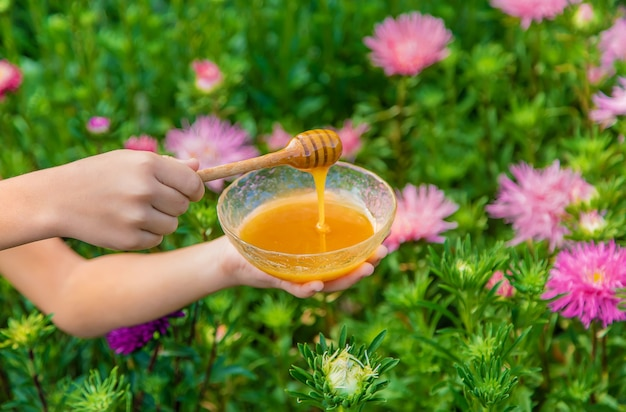 Child holds honey in her hands. selective focus. nature.