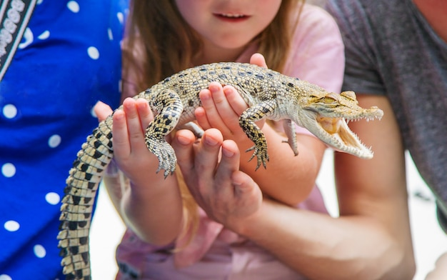 The child holds a small crocodile in his hands.