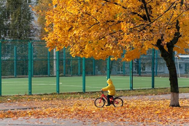 Ребенок в желтом плаще на велосипеде под большим желтым деревом. солнечный осенний день.