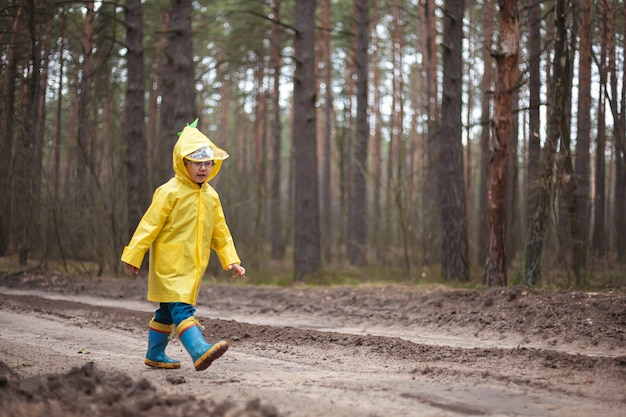 黄色いレインコートを着た子供が森の中を歩き、楽しんでいます