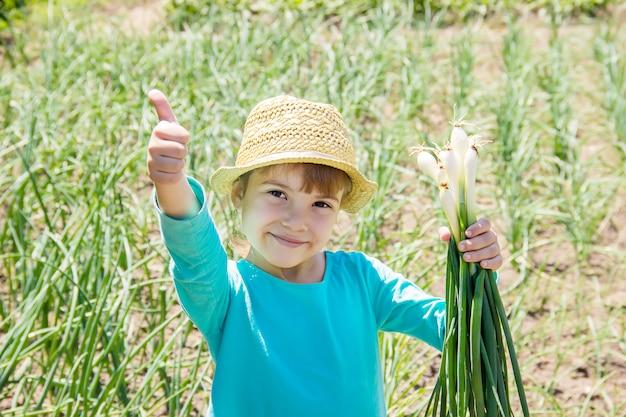 子供は若い緑色の弓を持っています。セレクティブフォーカス