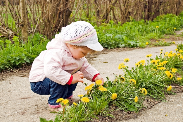 The child kid girl take dandelions