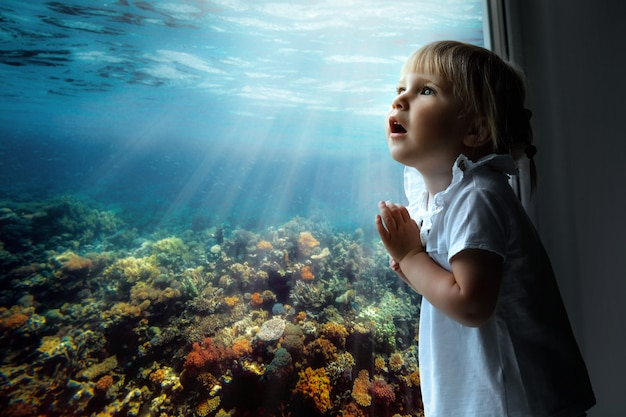 The child looks out the window on fish and the coral bottom in the aquarium