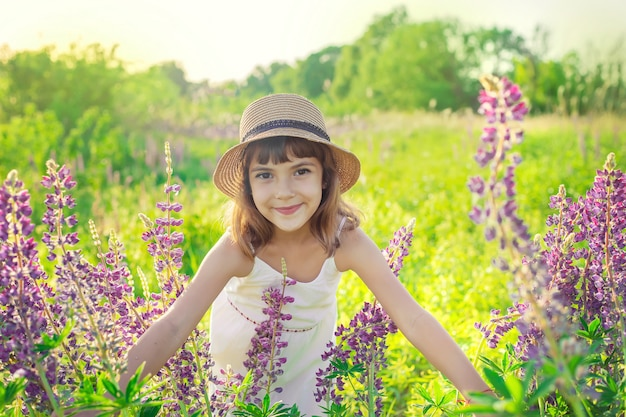 Child in a lupine field