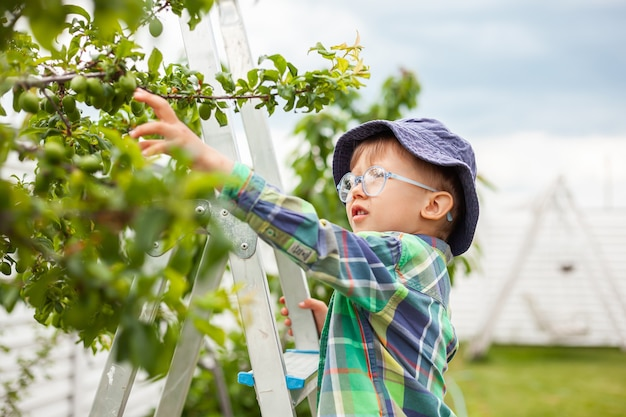 나무 근처 사다리에 아이, 뒤뜰 정원에서 정원 가꾸기