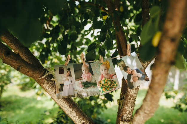 Child pictures on a tree